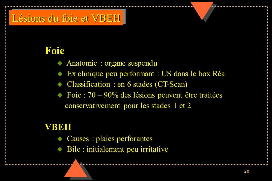 Lésions du foie et VBEH Foie VBEH Anatomie : organe suspendu