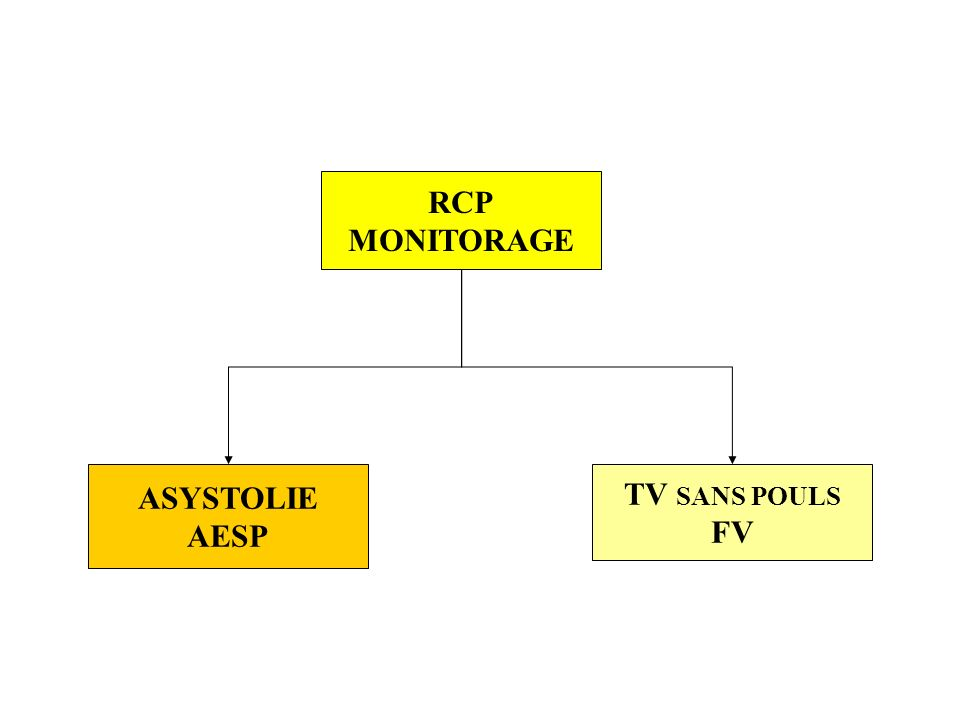 RCP MONITORAGE ASYSTOLIE AESP TV SANS POULS FV