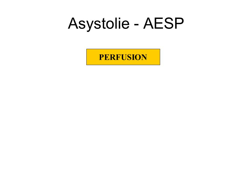 Asystolie - AESP PERFUSION