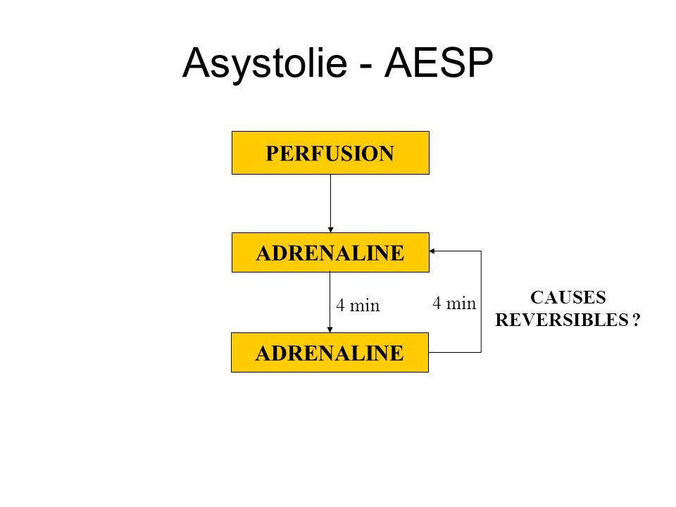 Asystolie - AESP PERFUSION ADRENALINE ADRENALINE CAUSES 4 min 4 min