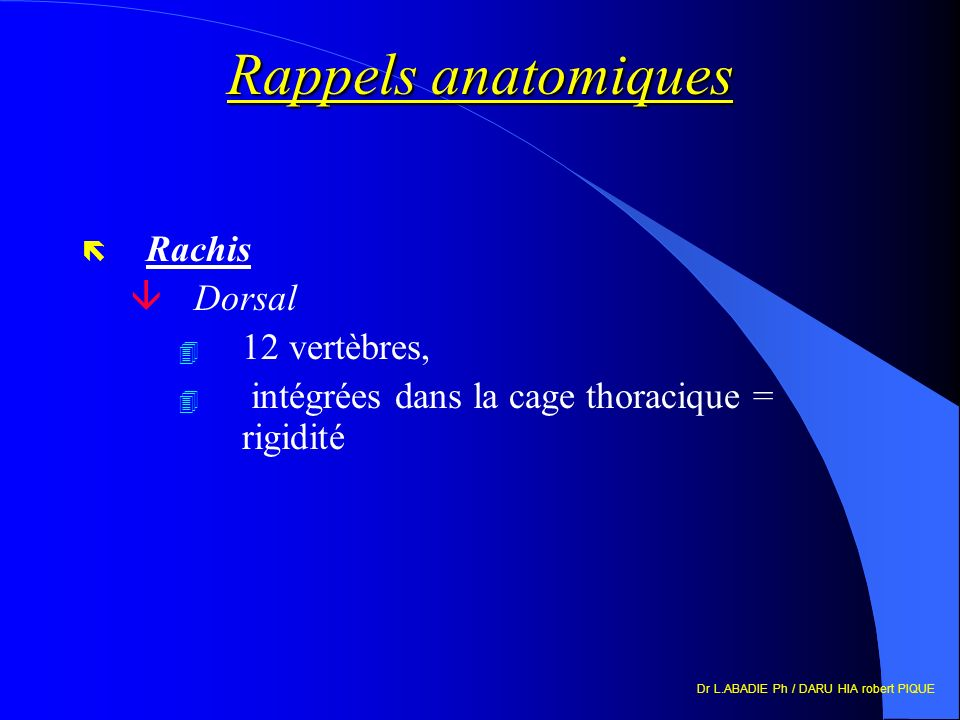 Rappels anatomiques Rachis Dorsal 12 vertèbres,