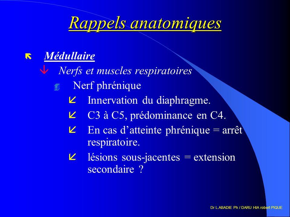 Rappels anatomiques Médullaire Nerfs et muscles respiratoires