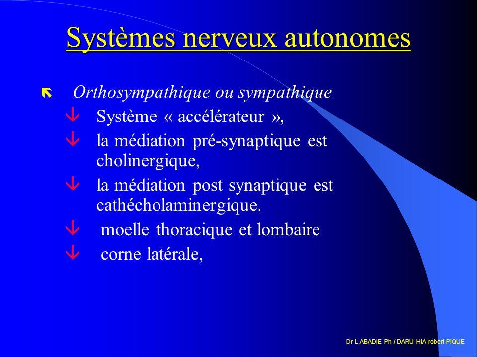 Systèmes nerveux autonomes