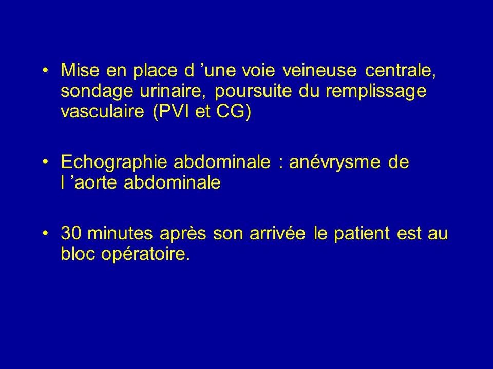 Mise en place d 'une voie veineuse centrale, sondage urinaire, poursuite du remplissage vasculaire (PVI et CG)