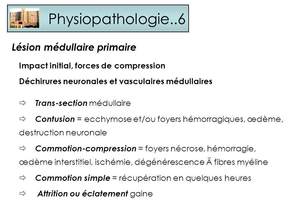 Physiopathologie..6 Lésion médullaire primaire