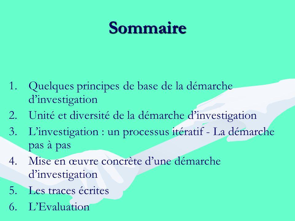 Sommaire Quelques principes de base de la démarche d'investigation