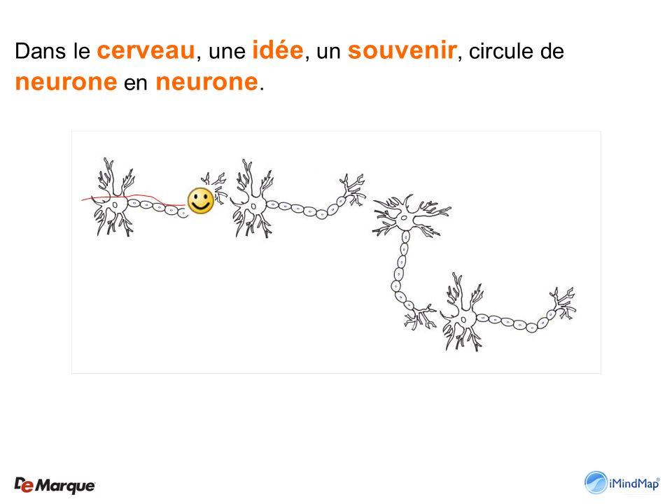 Dans le cerveau, une idée, un souvenir, circule de