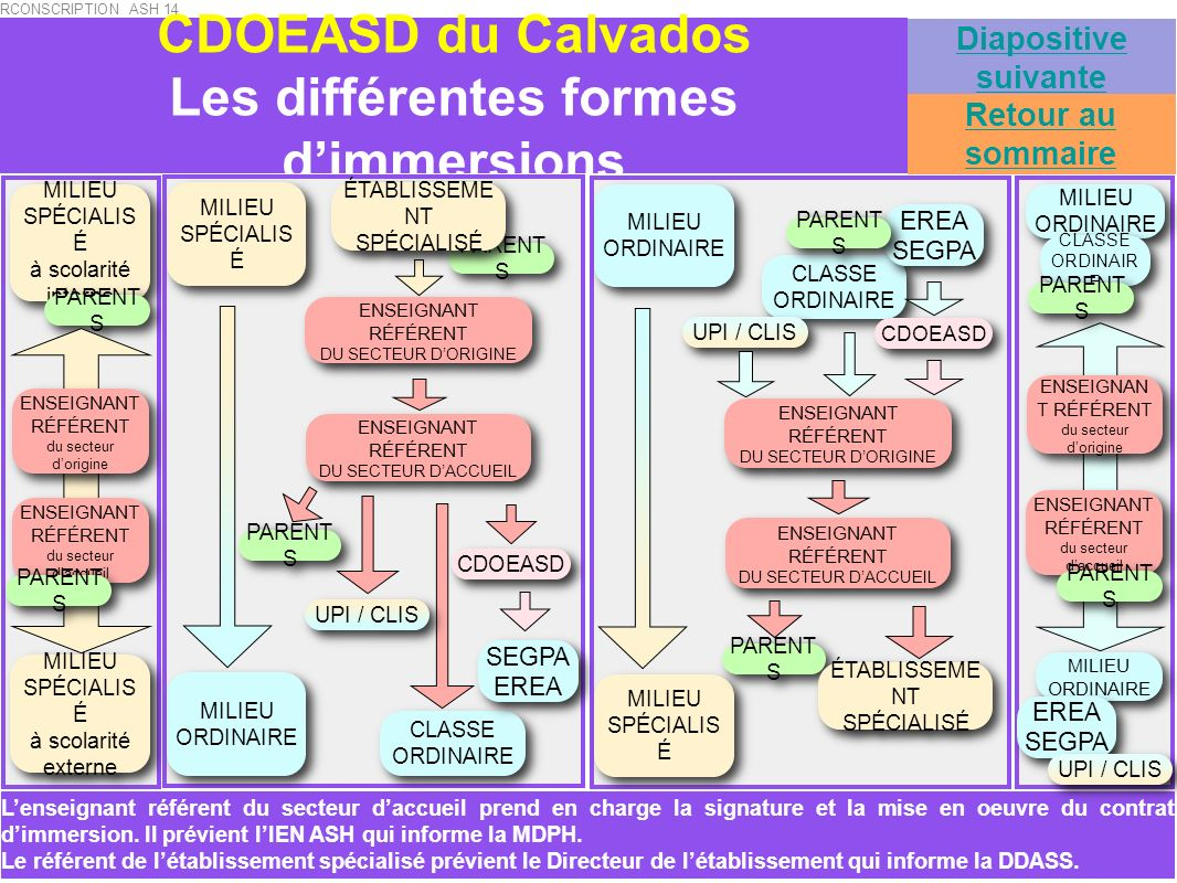 CDOEASD du Calvados Les différentes formes d'immersions