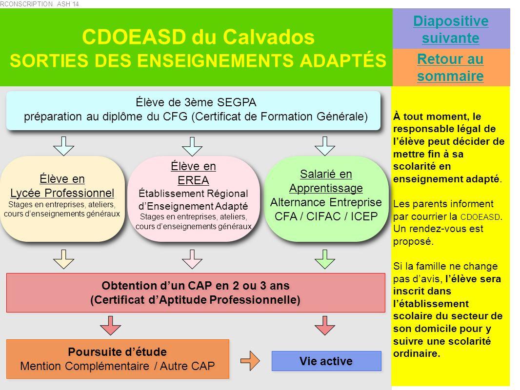 CDOEASD du Calvados SORTIES DES ENSEIGNEMENTS ADAPTÉS