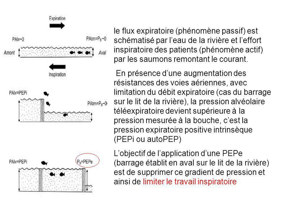 le flux expiratoire (phénomène passif) est schématisé par l'eau de la rivière et l'effort inspiratoire des patients (phénomène actif) par les saumons remontant le courant.