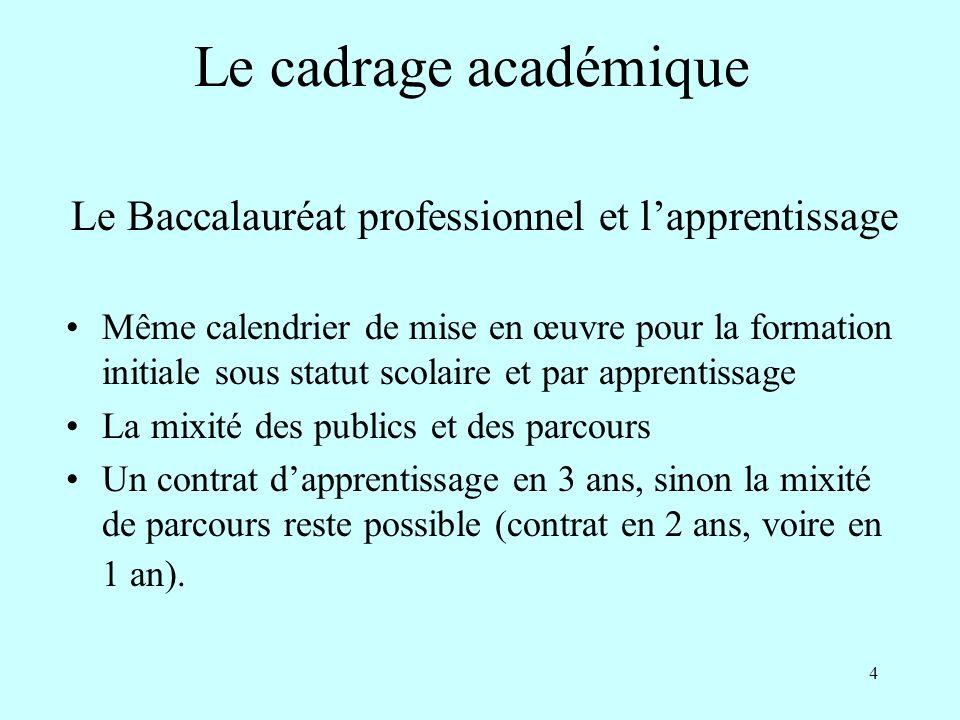Le Baccalauréat professionnel et l'apprentissage
