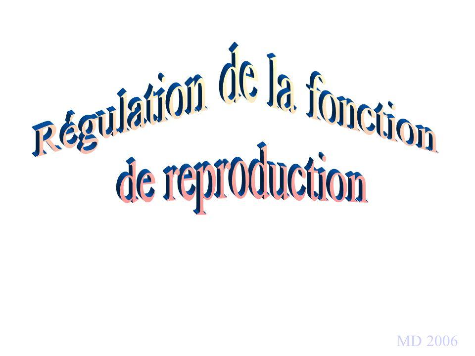 Régulation de la fonction