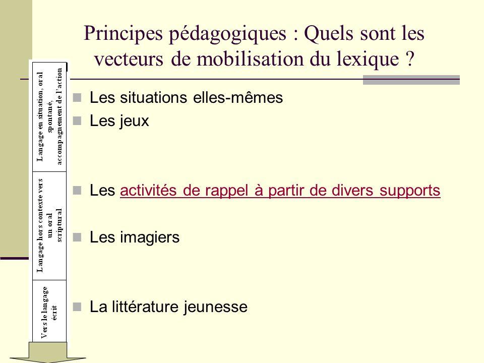 Principes pédagogiques : Quels sont les vecteurs de mobilisation du lexique