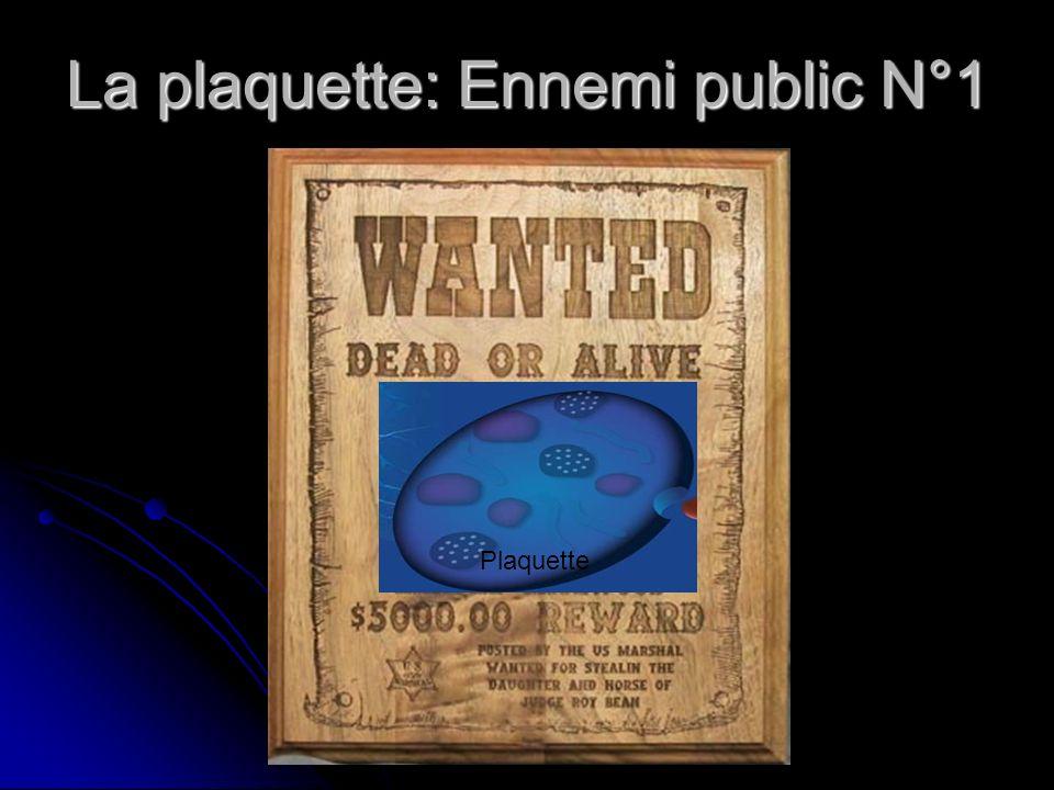 La plaquette: Ennemi public N°1