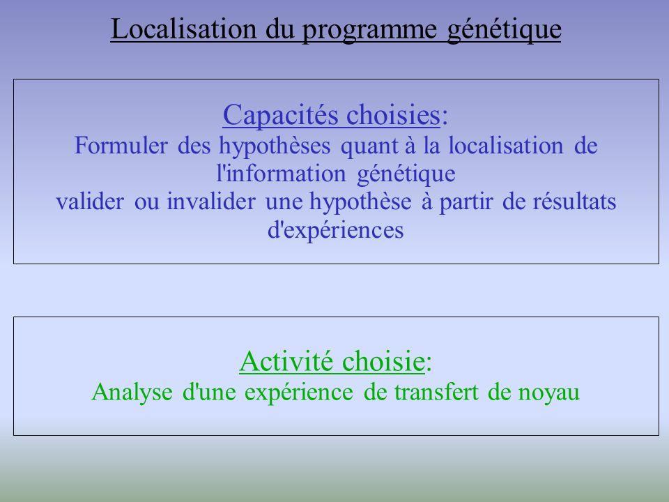 Localisation du programme génétique