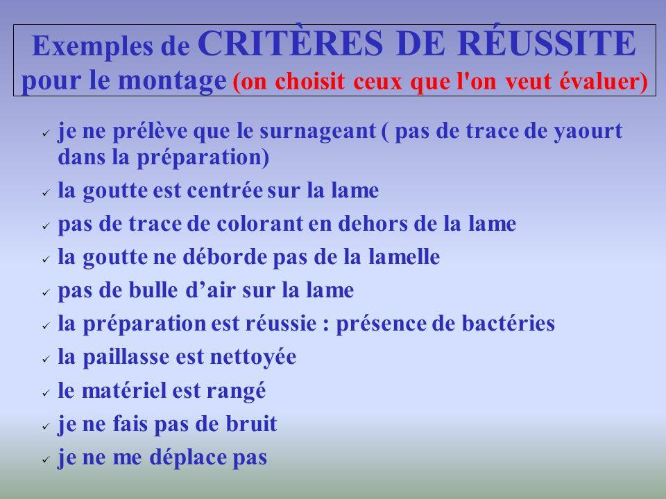 Exemples de CRITÈRES DE RÉUSSITE pour le montage (on choisit ceux que l on veut évaluer)