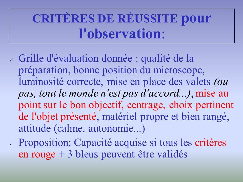 CRITÈRES DE RÉUSSITE pour l observation: