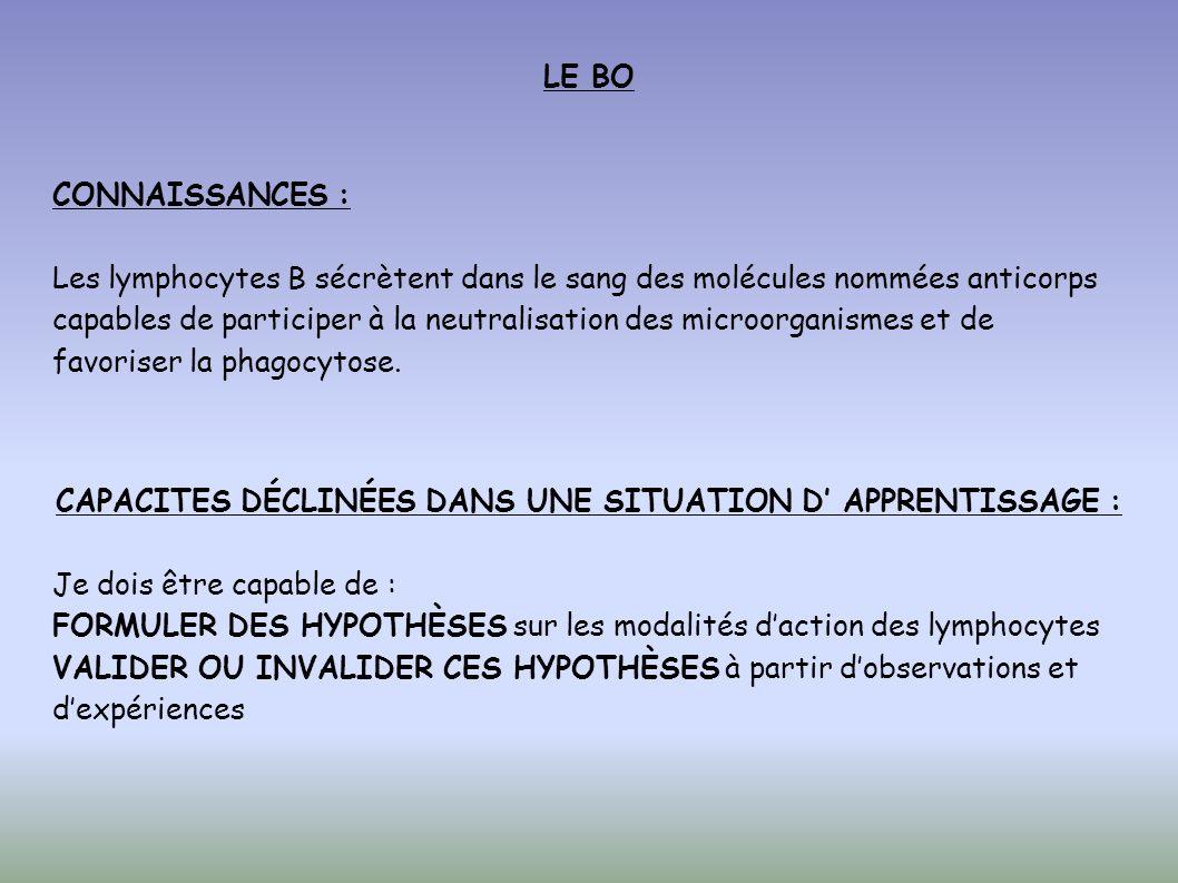 CAPACITES DÉCLINÉES DANS UNE SITUATION D' APPRENTISSAGE :