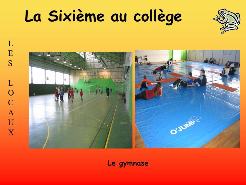 La Sixième au collège LES L O C A U X Le gymnase