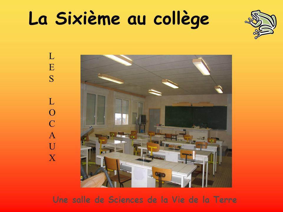 La Sixième au collège L E S O C A U X
