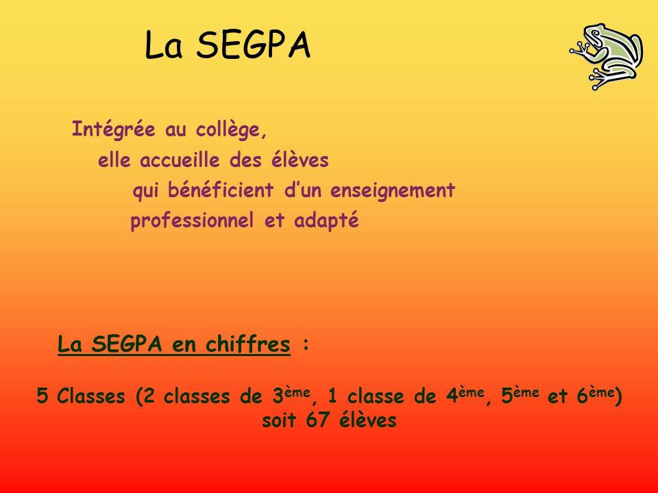 La SEGPA La SEGPA en chiffres : Intégrée au collège,