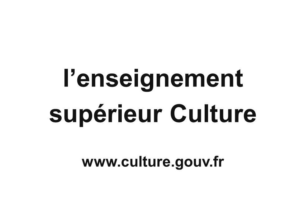 l'enseignement supérieur Culture
