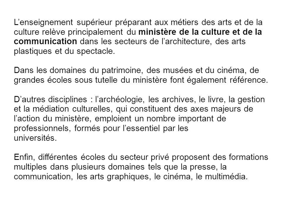 L'enseignement supérieur préparant aux métiers des arts et de la culture relève principalement du ministère de la culture et de la communication dans les secteurs de l'architecture, des arts plastiques et du spectacle.