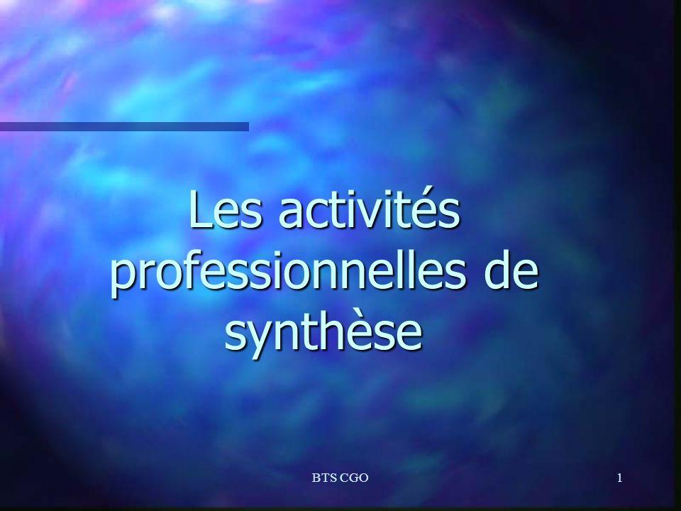 Les activités professionnelles de synthèse