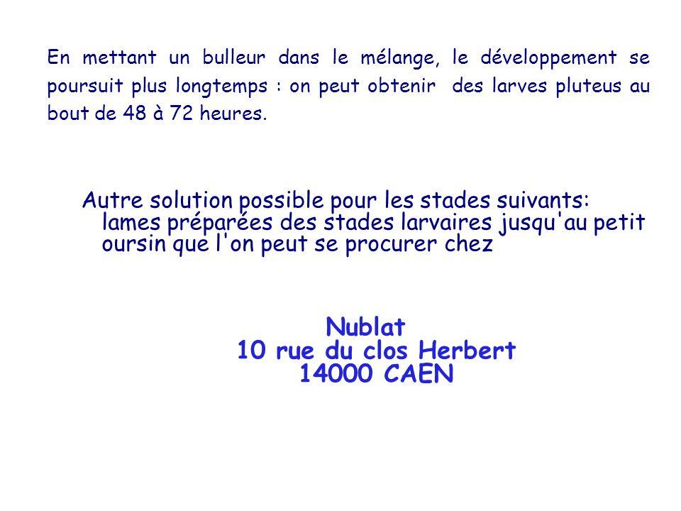 Nublat 10 rue du clos Herbert 14000 CAEN