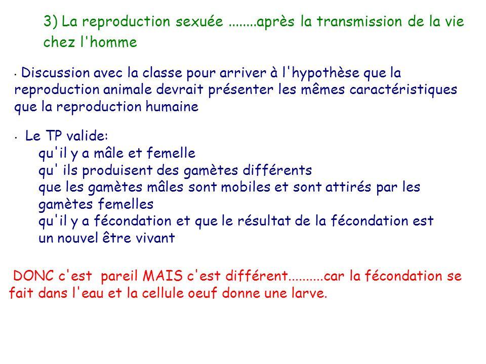 3) La reproduction sexuée ........après la transmission de la vie chez l homme