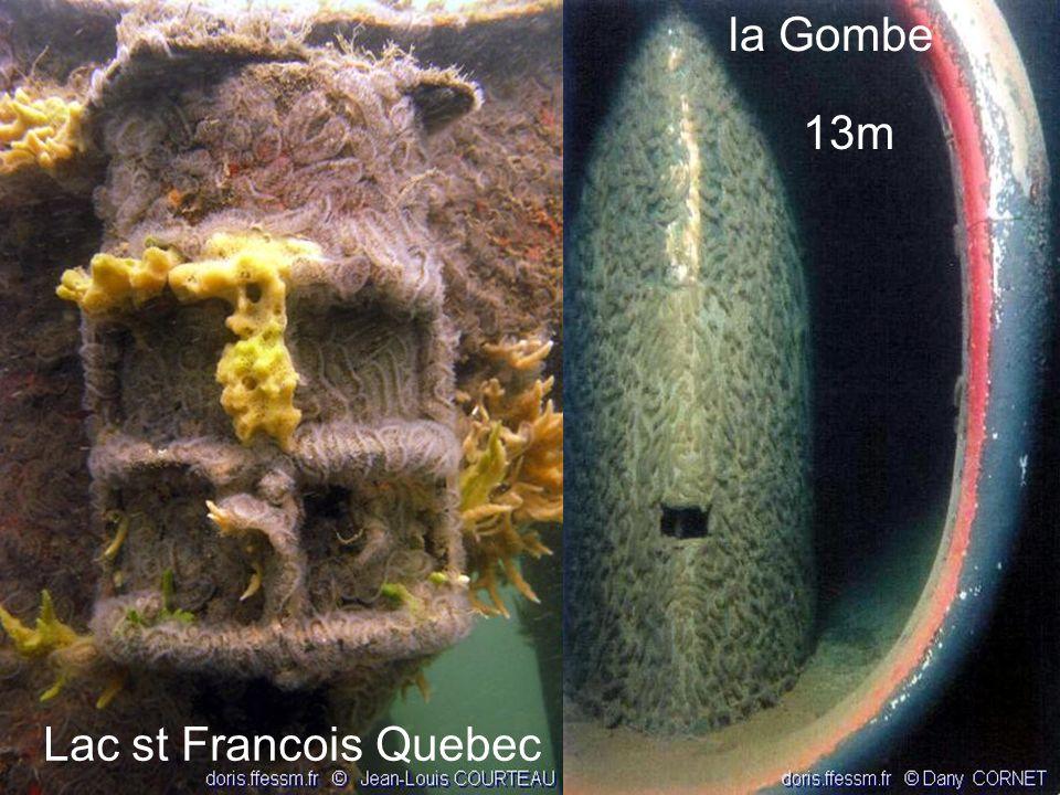la Gombe 13m Lac st Francois Quebec