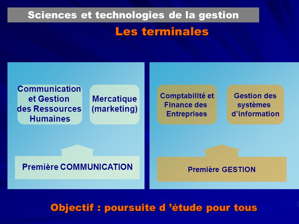 Les terminales Sciences et technologies de la gestion