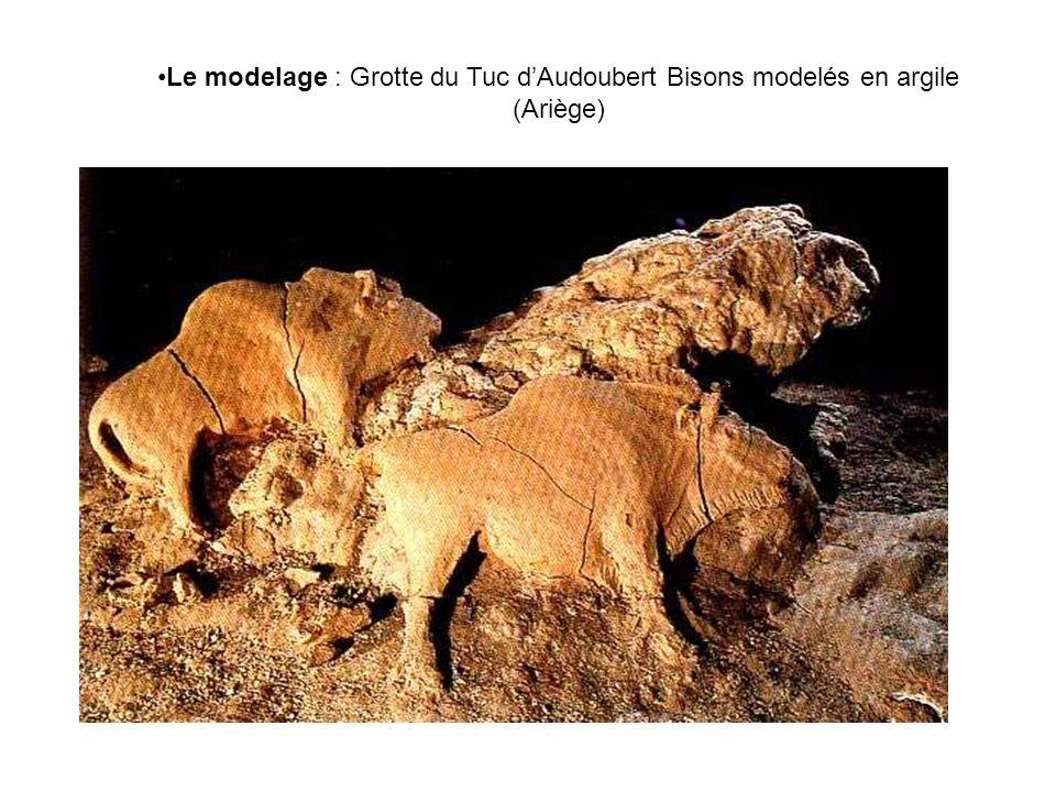 Le modelage : Grotte du Tuc d'Audoubert Bisons modelés en argile