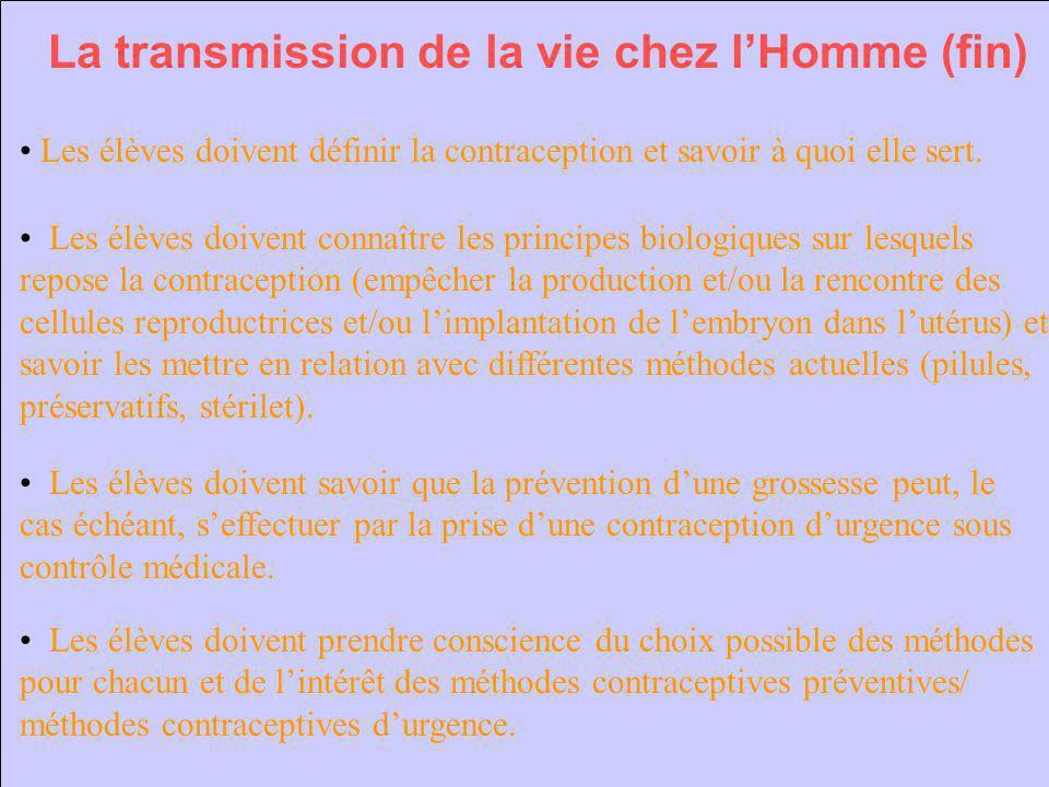 La transmission de la vie chez l'Homme (fin)