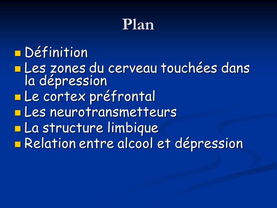 Plan Définition Les zones du cerveau touchées dans la dépression