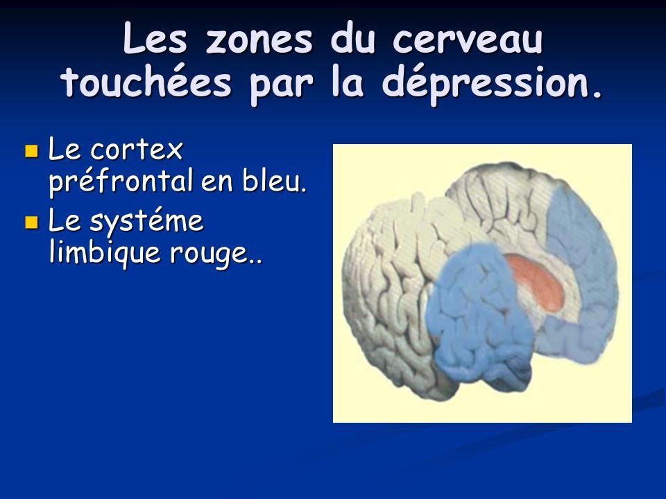 Les zones du cerveau touchées par la dépression.