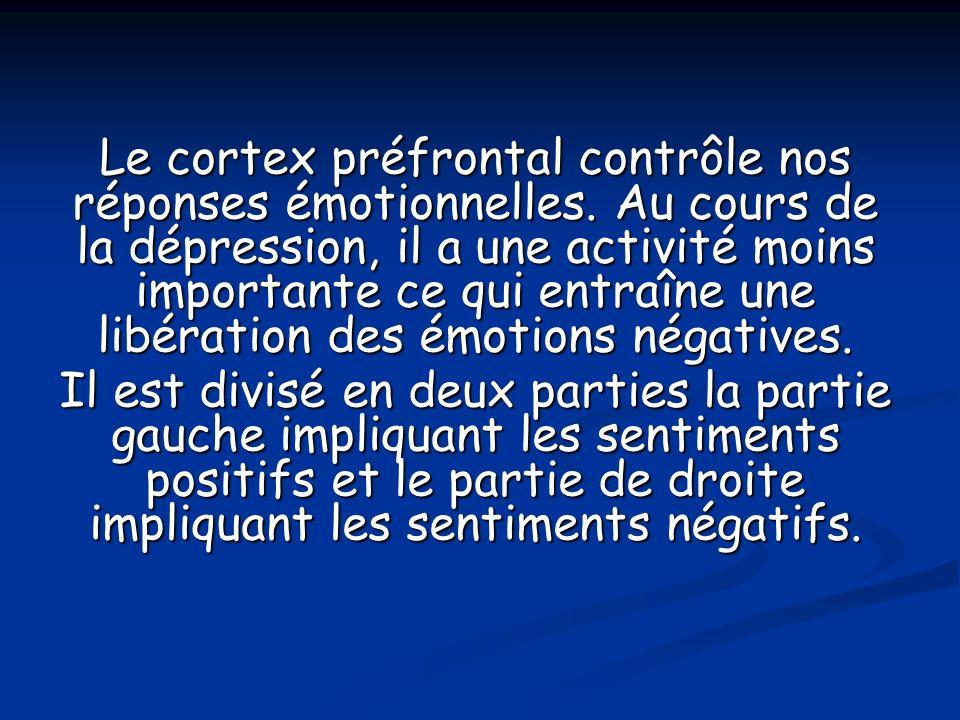 Le cortex préfrontal contrôle nos réponses émotionnelles