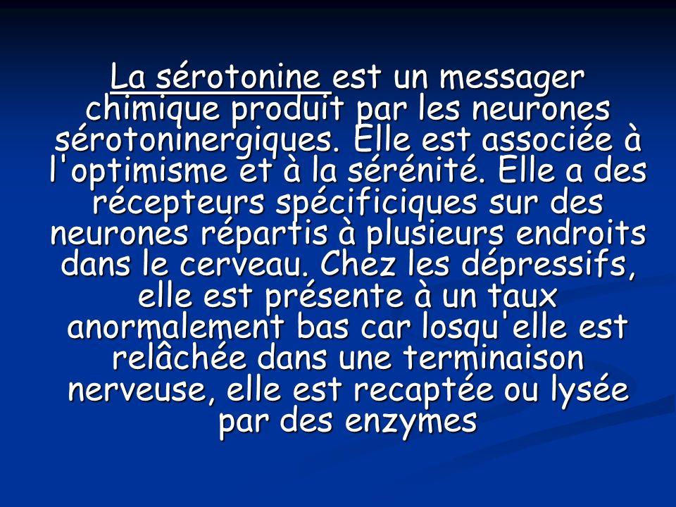 La sérotonine est un messager chimique produit par les neurones sérotoninergiques.