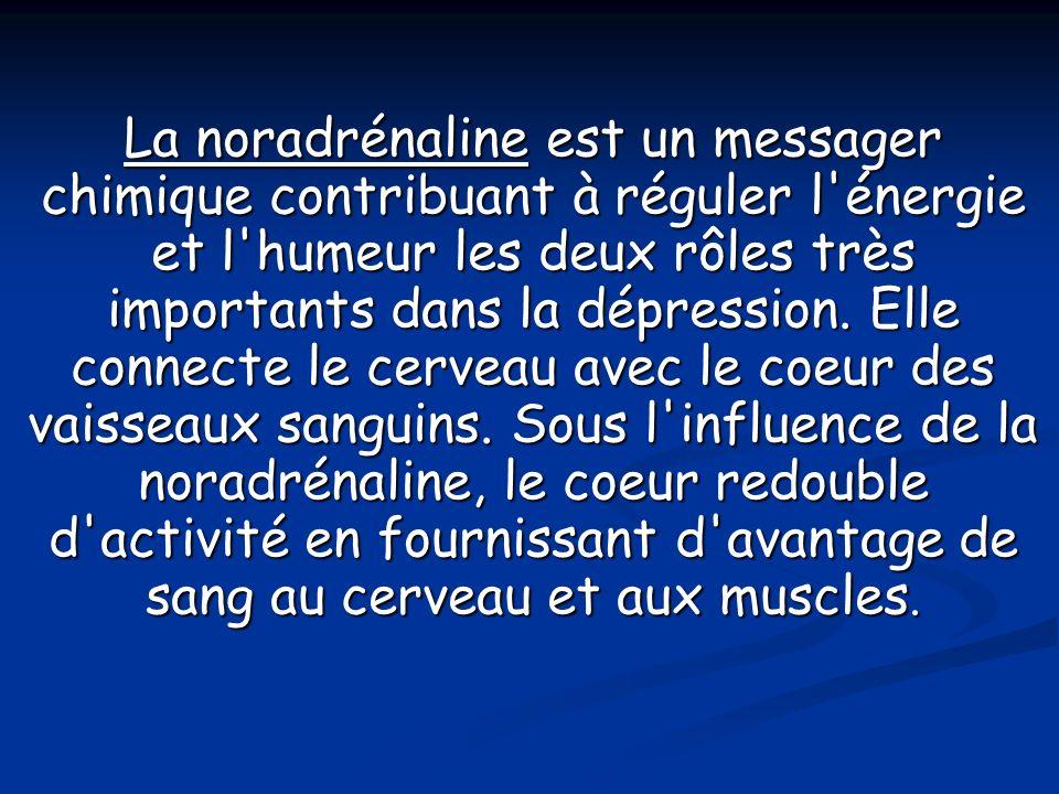 La noradrénaline est un messager chimique contribuant à réguler l énergie et l humeur les deux rôles très importants dans la dépression.
