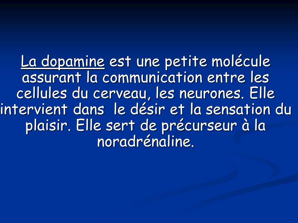 La dopamine est une petite molécule assurant la communication entre les cellules du cerveau, les neurones.