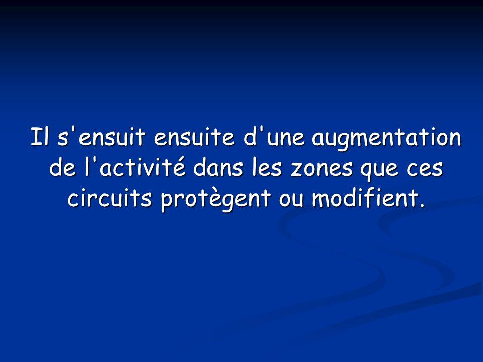 Il s ensuit ensuite d une augmentation de l activité dans les zones que ces circuits protègent ou modifient.