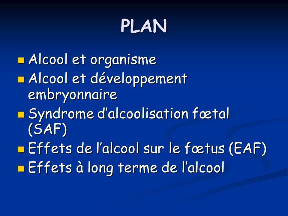 PLAN Alcool et organisme Alcool et développement embryonnaire