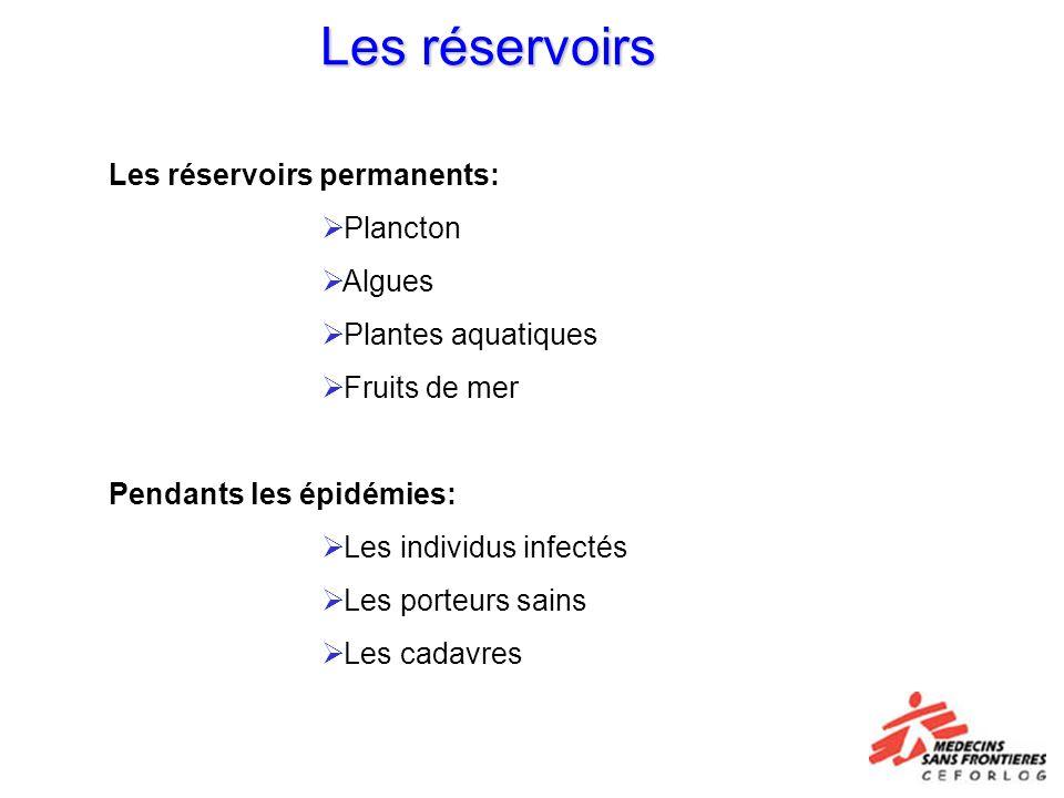 Les réservoirs Les réservoirs permanents: Plancton Algues