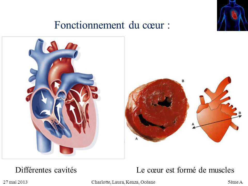Fonctionnement du cœur :