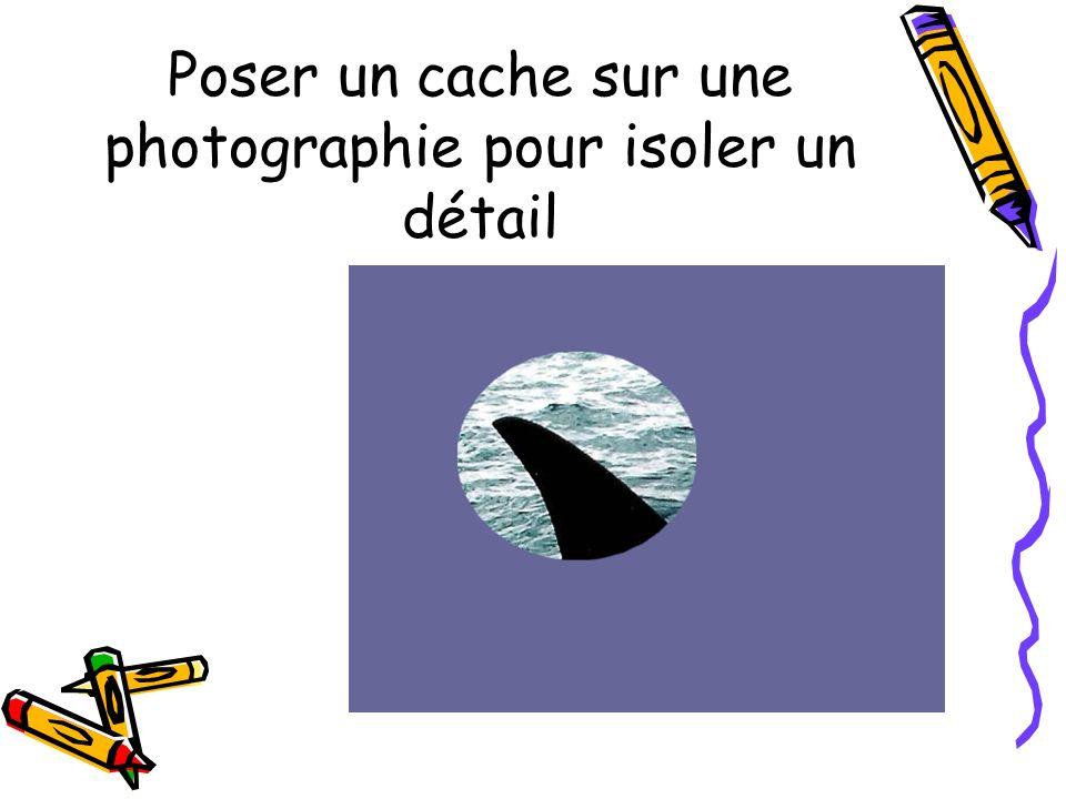 Poser un cache sur une photographie pour isoler un détail