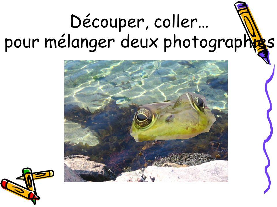 Découper, coller… pour mélanger deux photographies