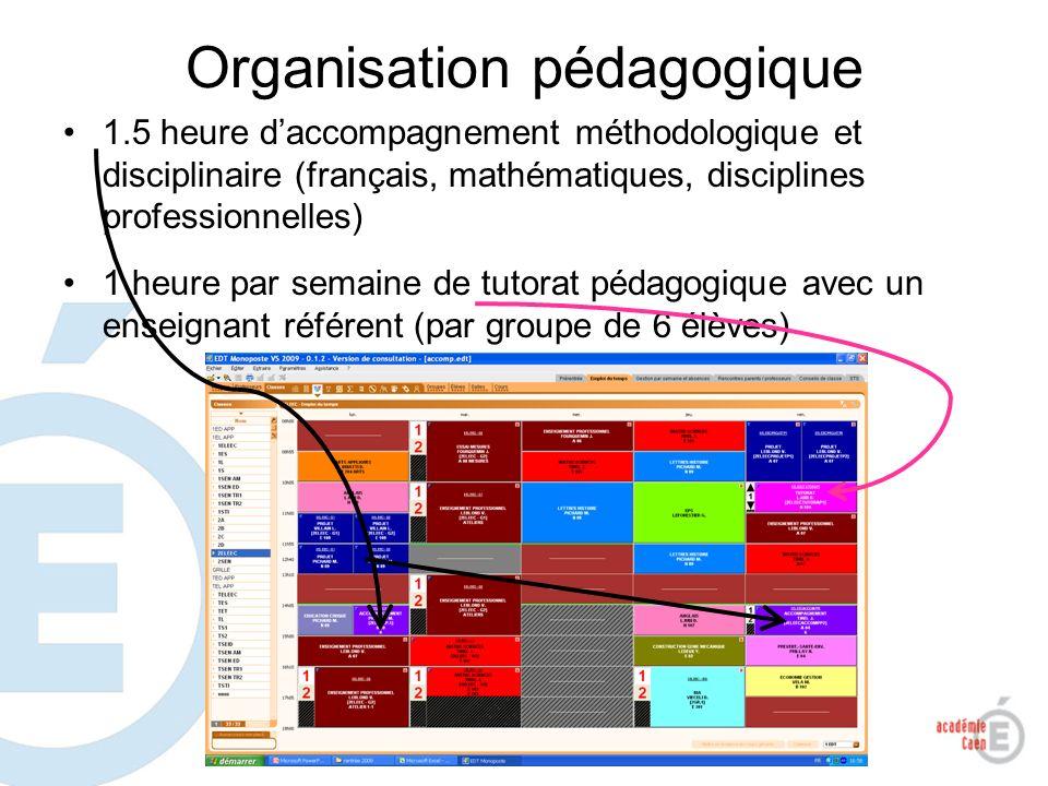 Organisation pédagogique