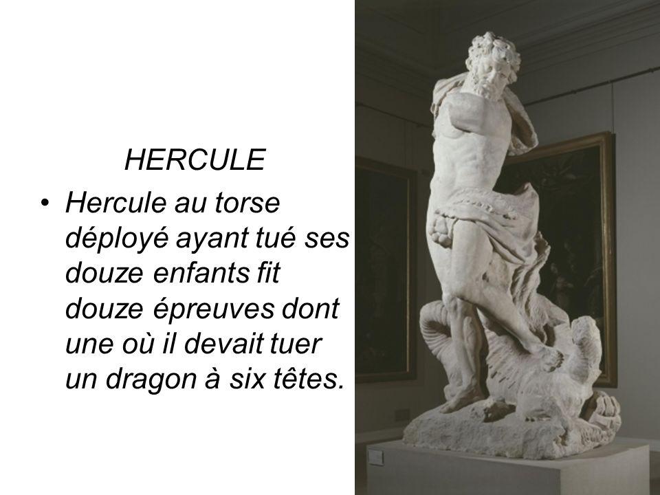 HERCULE Hercule au torse déployé ayant tué ses douze enfants fit douze épreuves dont une où il devait tuer un dragon à six têtes.
