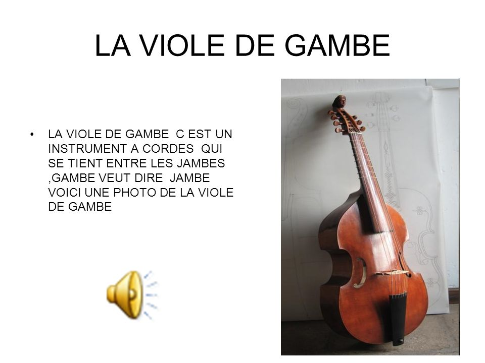 LA VIOLE DE GAMBE