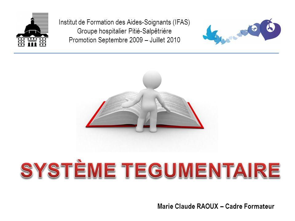 SYSTÈME TEGUMENTAIRE Institut de Formation des Aides-Soignants (IFAS)
